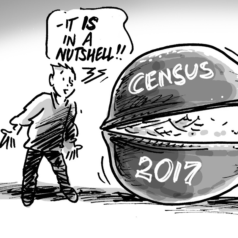 Census in a nutshell